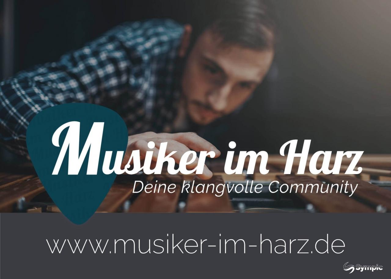Musiker im Harz Flyer2