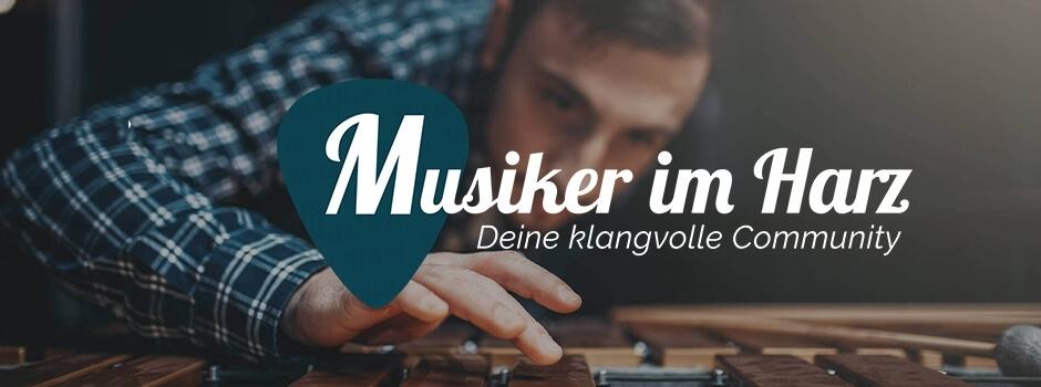musiker-im-harz-musiker-sucht-musiker.jpg